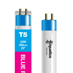 24W Aquarium T5 Fluorescent Blue Plus + Tube Bulb