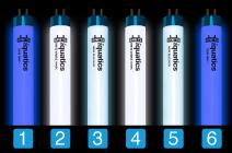 Aquarium T5 Combinations with iQuatics