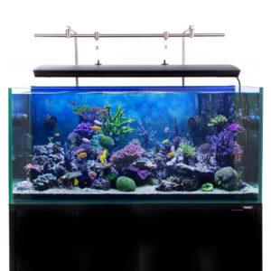 Hanging Bar full setup back mount with corals