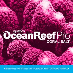 10kg Aquarium Salt-Red Sea Coral Pro Salt- Marine Salt -iQuatics Aquarium Salt